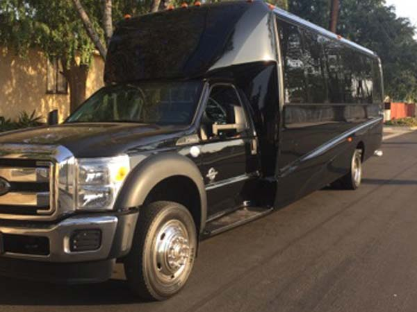 27 Passenger Luxury Mini Coach